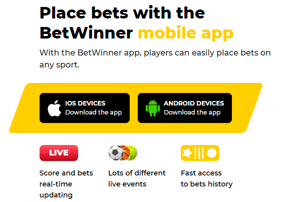 BetWinner mobiele program